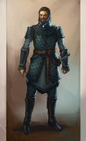 westmen armor concept by wanderer-arts