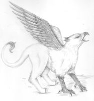 Mythical Creatures: Griffin by zepheenia