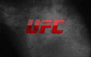 UFC2008 by TechII