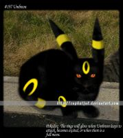 Umbreon by CupHa1ful