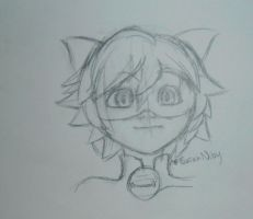 Chat Noir Doodle by Sarah-is-Serenity