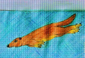 Chevrotain whale evolution - step 2 by palaeorigamipete