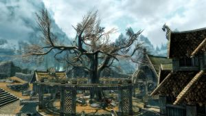The Slumbering Tree at Whiterun by Solace-Grace