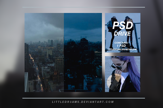 PSD 019 - DRIVE by LittleDr3ams