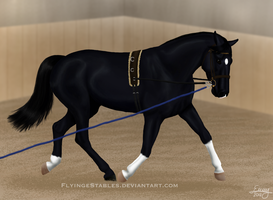 Lunging Calle by FamousFox