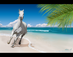Prince of the Caribbean by JulieBales