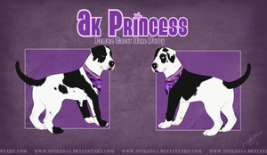 Ak Princess for Starwolf911 by Spike654