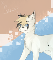 Reeece by saeshells