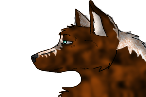 A wolf is only a wolf while being a wolf. by NeF0rFan