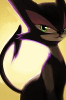 Purrloin by aocom