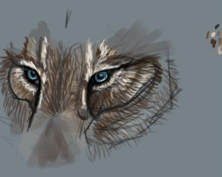 Wolf Eyes by vuer