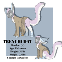 Trenchcoat ref by Attomizer