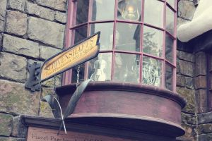hogsmeade shop II by duhitsmia