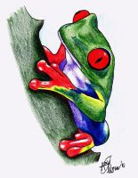 Tree Frog by your-mom--burn