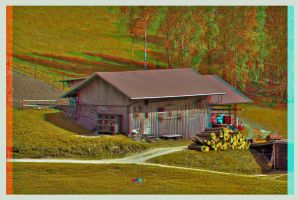 Wooden Shed :: Anaglyph 3D :: by zour