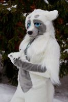 My new fursuit by 2078