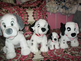 Dalmatians on my bed for Sora4kairi4ever6! :D by BeautifulHusky