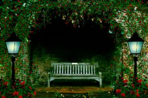 Night Garden Premade Background by SusanaDS-Stocks