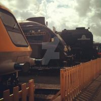 High Speed Trio (RAILFEST 2012) by AferVentus