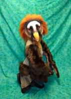 Bearded Vulture Partial 2 by temperance