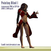 Pointing Blind by CandG-stock
