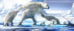 The polarbears rules by Gryphart