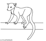 Free Lemur Lineart by EscaChatlands