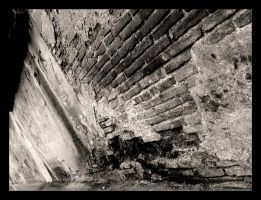 the wall by Paulx