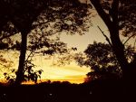 sunsets. by miamee09