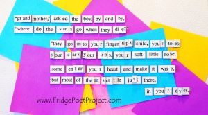 The Daily Magnet #326 by FridgePoetProject