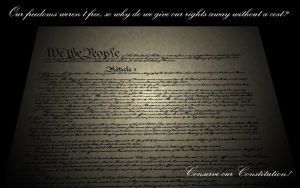 Conservation of Constitution by michaelgoldthriteart
