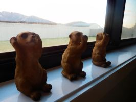 The meerkats by Lazy-Susan