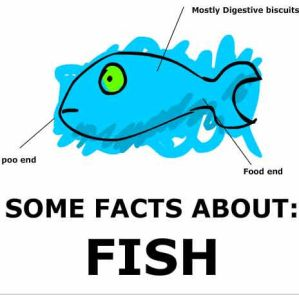 Some facts about fish by guyflash on deviantart for Interesting facts about fish