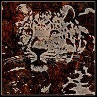 Leopard 19 by Globaludodesign