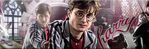 Hogwarts my Home Banner by VaL-DeViAnT