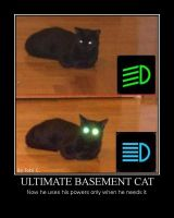 Demotiv-basement Cat by SpiderGuy-ITABoy