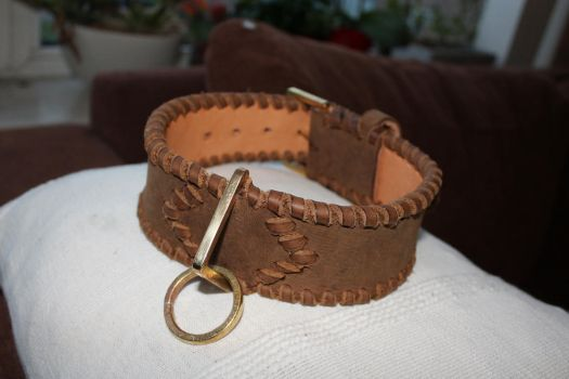leather dog collar by wulvi