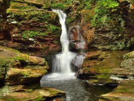 Ricketts Glen State Park 99 by Dracoart-Stock