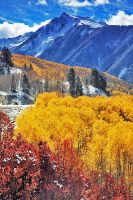 Autumn and snow in Colorado by linkexperts