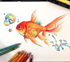 Rainbow Goldfish by Lucky978