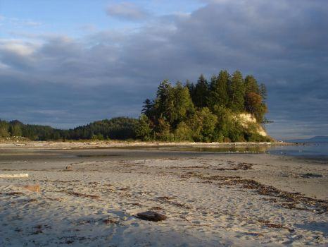Thornomby Bay by noahmuller