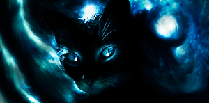 The Dark Cat. by mikeamadeuz