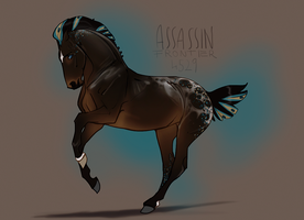 4529 Assassin Frontier by NorthEast-Stables