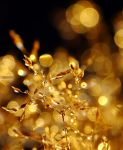golden by efeline