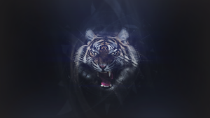 Abstract Tiger Wallpaper by ZeraCreations