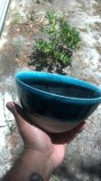 Waterblue, black and white bowl by cmckoy