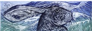The Sea Hare Etching by Daicelf