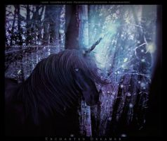 Enchanted Dreamer ll by BlueBird-Graphics
