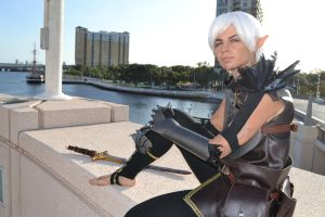 Dragon Age 2 cosplay by Methvell