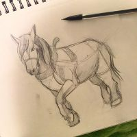 61- Draft Horse Sketch by Lucky978
